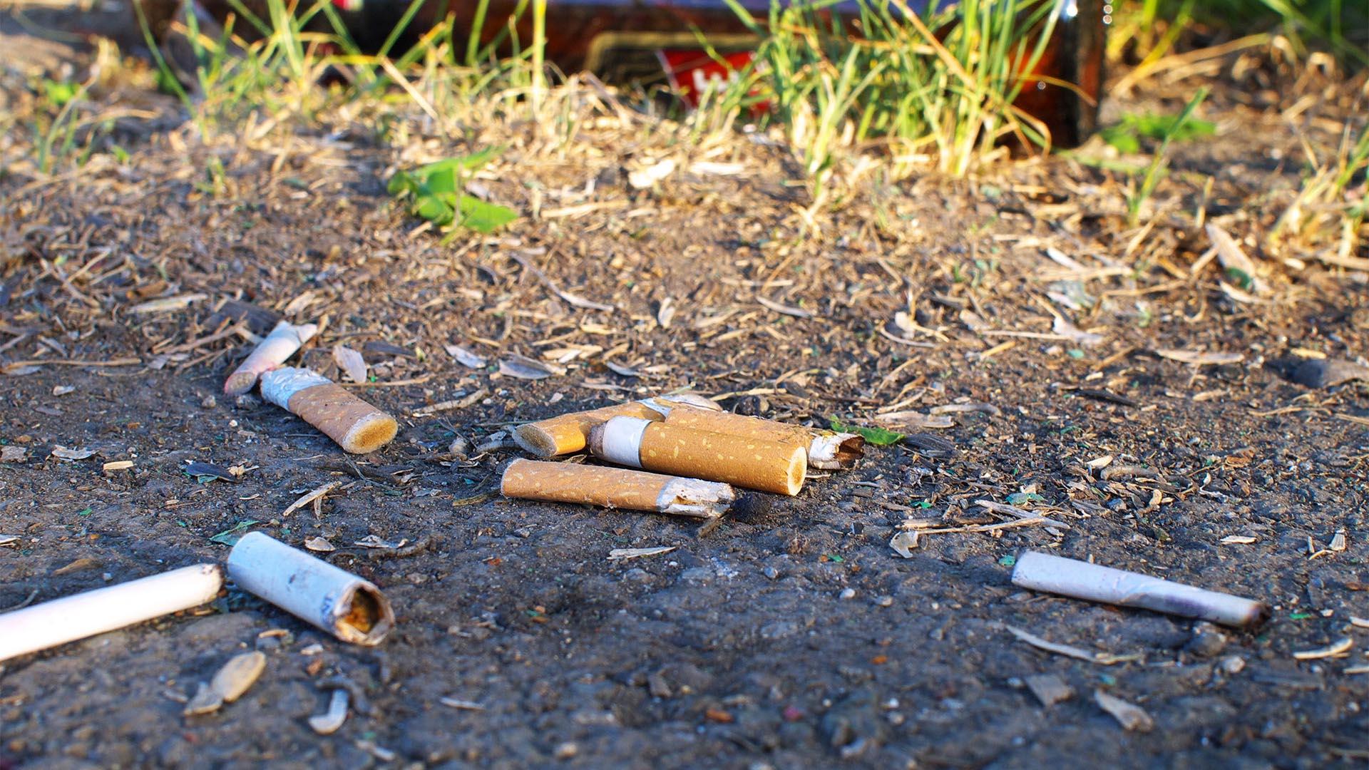 Zigarettenkippen – pures Gift für die Umwelt